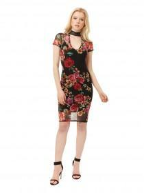 Jane Norman Floral Mesh Choker Bodycon Dress