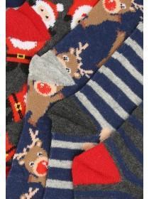 Boys 5pk Festive Socks
