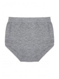 Womens Grey Seamfree Hi-Leg Briefs