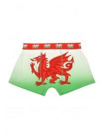 Mens Novelty Wales Boxers