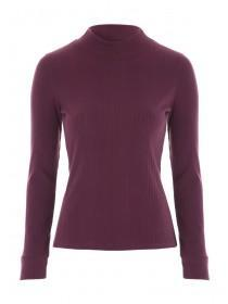 Jane Norman Berry High Neck Ribbed Top