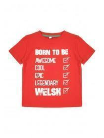 Younger Boys Red Welsh T-Shirt