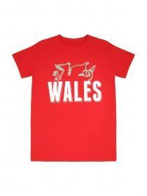 Older Boys Red Short Sleeve Wales Entry T-Shirt